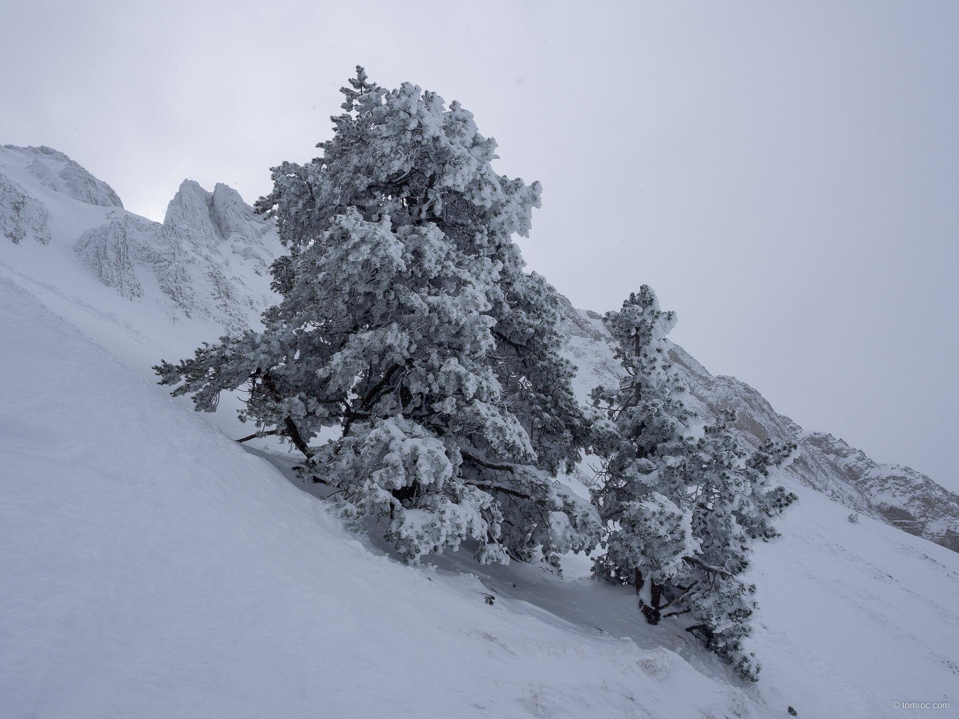 Ski de randonnée au Pas de la Ville (Vercors)