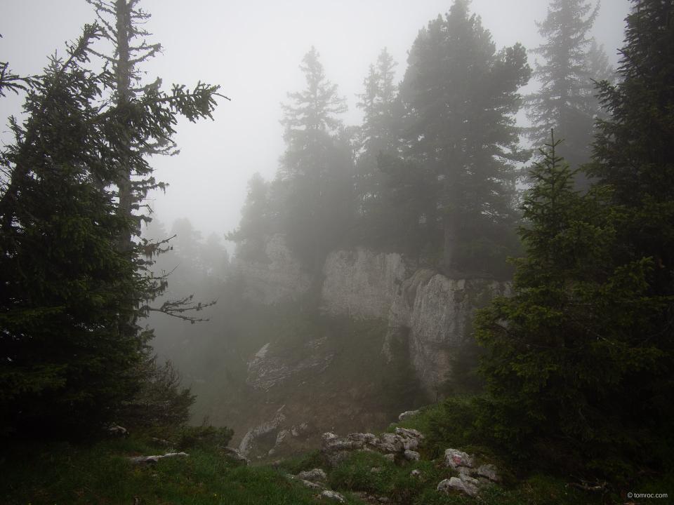 La brume, totale jusqu'en milieu d'après-midi