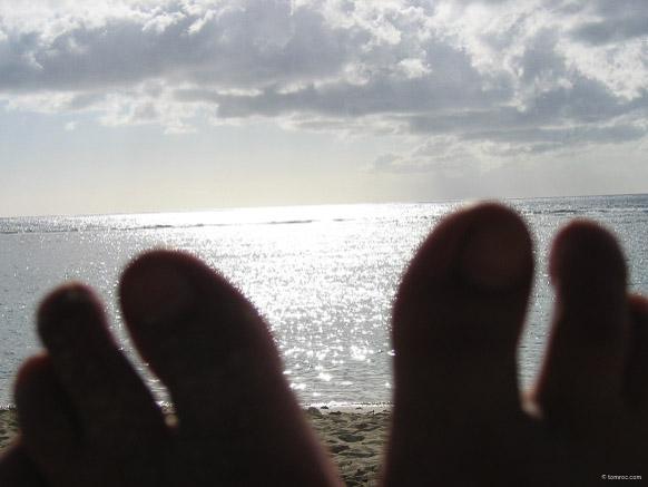 Mission de deux mois à la Réunion